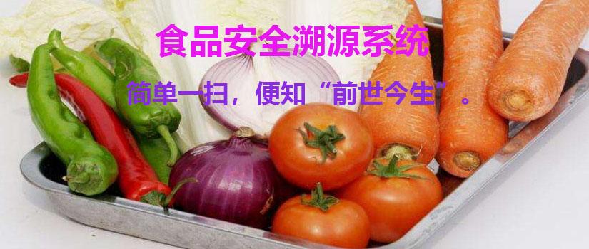 食品安全溯源系统 溯源系统解决方案 溯源栏目官网 一物一码营销系统